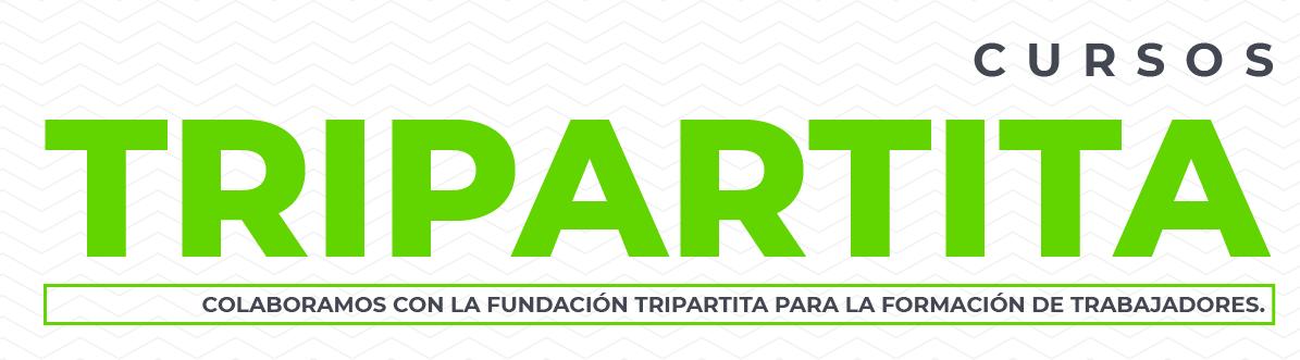 cursos de formación tripartita en autoescuelas Mieres Asturias